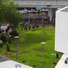 "Cladire-de-birouri-Bucharest-One - Amenajare-peisagistica-by-Greenshop-Rulouri-de-gazon-6 • <a style=""font-size:0.8em;"" href=""http://www.flickr.com/photos/139206224@N02/26527596683/"" target=""_blank"">View on Flickr</a>"